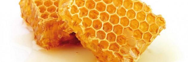 Terapia glejaków mózgu – produkty pszczele